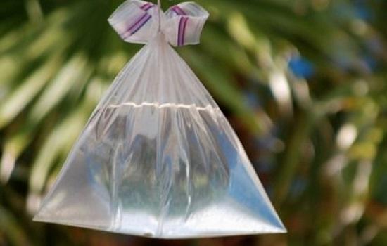 Bolsas de agua con vodka para alejar moscas
