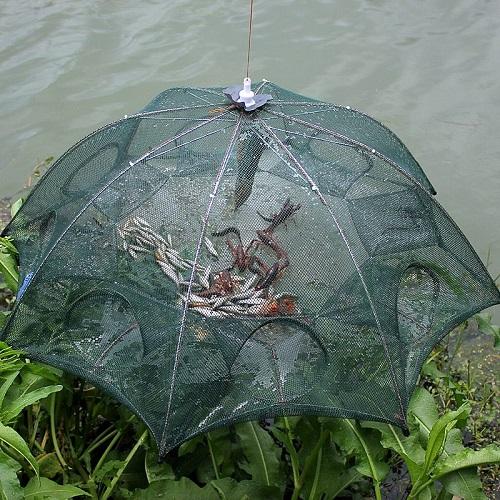 Trampa para pescar peces