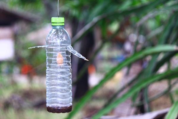 Trampas para insectos caseras